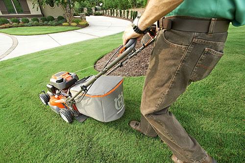 Maintenance tonte pelouse guérande